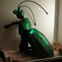 Beetle dude?