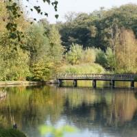 Park near Amstelveen