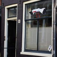 Window Stork