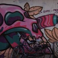 Beautiful graffiti on a side street near Albert Cuyp Street market