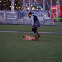 Girl playing with her dog on the Museumplein next to the Van Gogh museum
