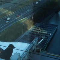 Raven on the edge, looking at the bicycle parking and motorway from the 14th floor