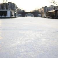 Skate tracks in the ice