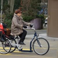 Rickshaw type bike with 2 kids seats.