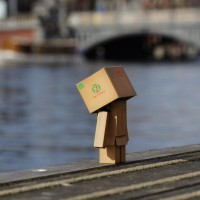 Danbo can't swim, but he tried. That's why he's all wet.